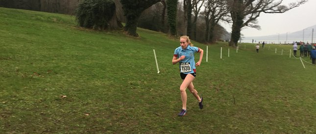 Clean sweep for Strathearn's Cross Country Teams!